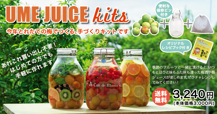 fruitsumesyu_img