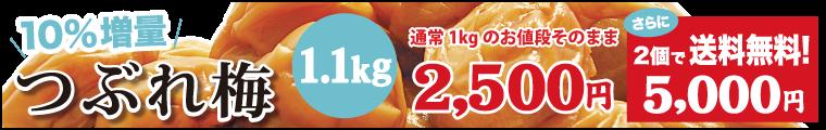 つぶれ梅1.1kg2個セット送料無料